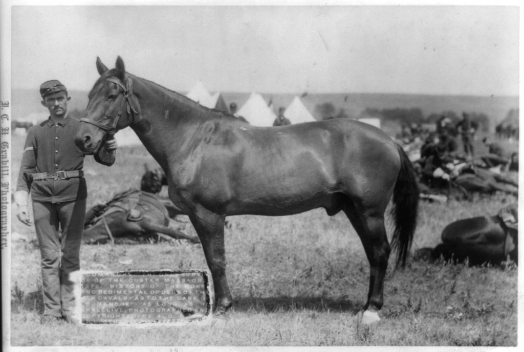 A horse and a man. Black and white. Comanche the horse. Other horse in background.